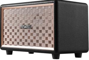 TEWELL Computer Speaker
