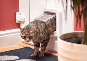 SureFlap - Sure Petcare Microchip Cat Flap